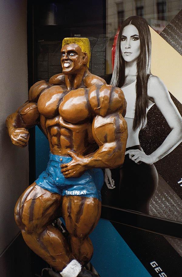 fitnessstudio günstig lichterwaldt wien